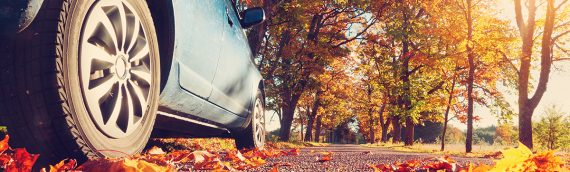 Safe Driving Tips For Fall
