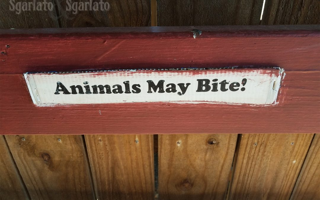 Do Dog Bite Legal Theories Apply to Other Animals?
